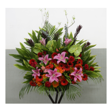 Flowers for Congratulations