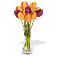 10 Mixed China Tulips Bouquet